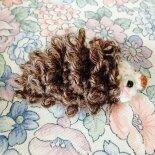 hedgehog by ackta