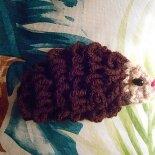 hedgehog by knotalot
