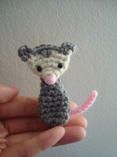 Opossum Blog